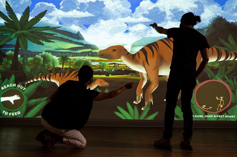 Visitors feed dinosaurs by stretching their arms.